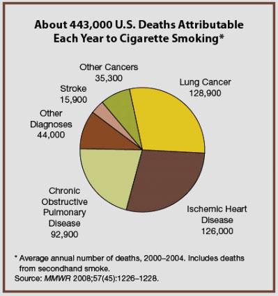 us death pie chart Top 10 Interesting Facts about Cigarette Smoking